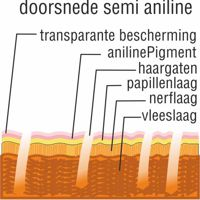 alles-over-leer doorsnede semi aniline perida.nl